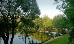 Park_2018-08-12-022