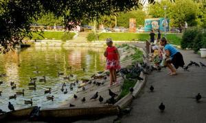 Прогулка по парку Кирова, Park_2018-08-12-030