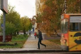 Осенняя зарисовка, osen012