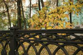 Осенняя зарисовка, osen013