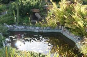 Ботанический сад. Часть 3