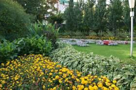 Ботанический сад. Часть 3, 0023