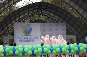 """Презентация """"Первого городского"""" канала и клипа Роднополисы, clip16"""