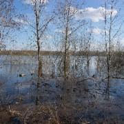 Весна. Река Вятка. Половодье.